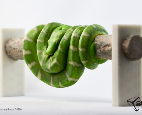 A snake curled on a branch. Created by Objex Designer Craig Reid. Printed on a ProJet 4500 by Objex Unlimited.