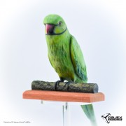 3D Sculpted Parakeet - ProJet 660Pro - Objex Unlimited